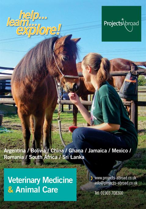 Projects Abroad Leaflet - Veterinary