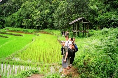 Projects Abroad volunteers go hiking in Thailand