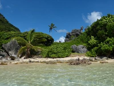 A scenic beach in Fiji, South Pacific